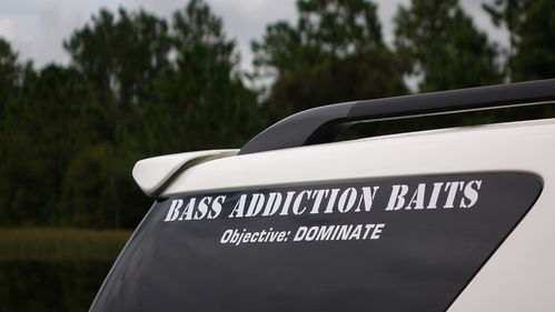 BASS ADDICTION BAITS STICKER-SMALL 18""